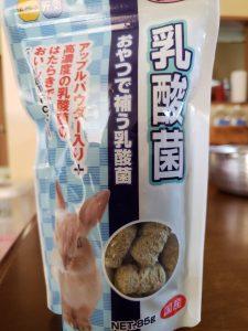 うさぎのおやつ 乳酸菌1
